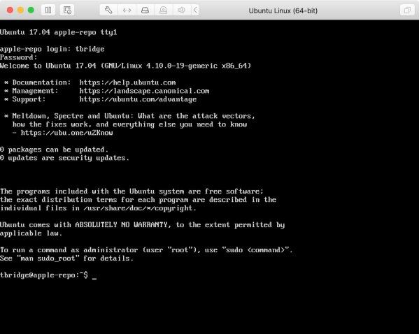 Ubuntu 19 Logged In